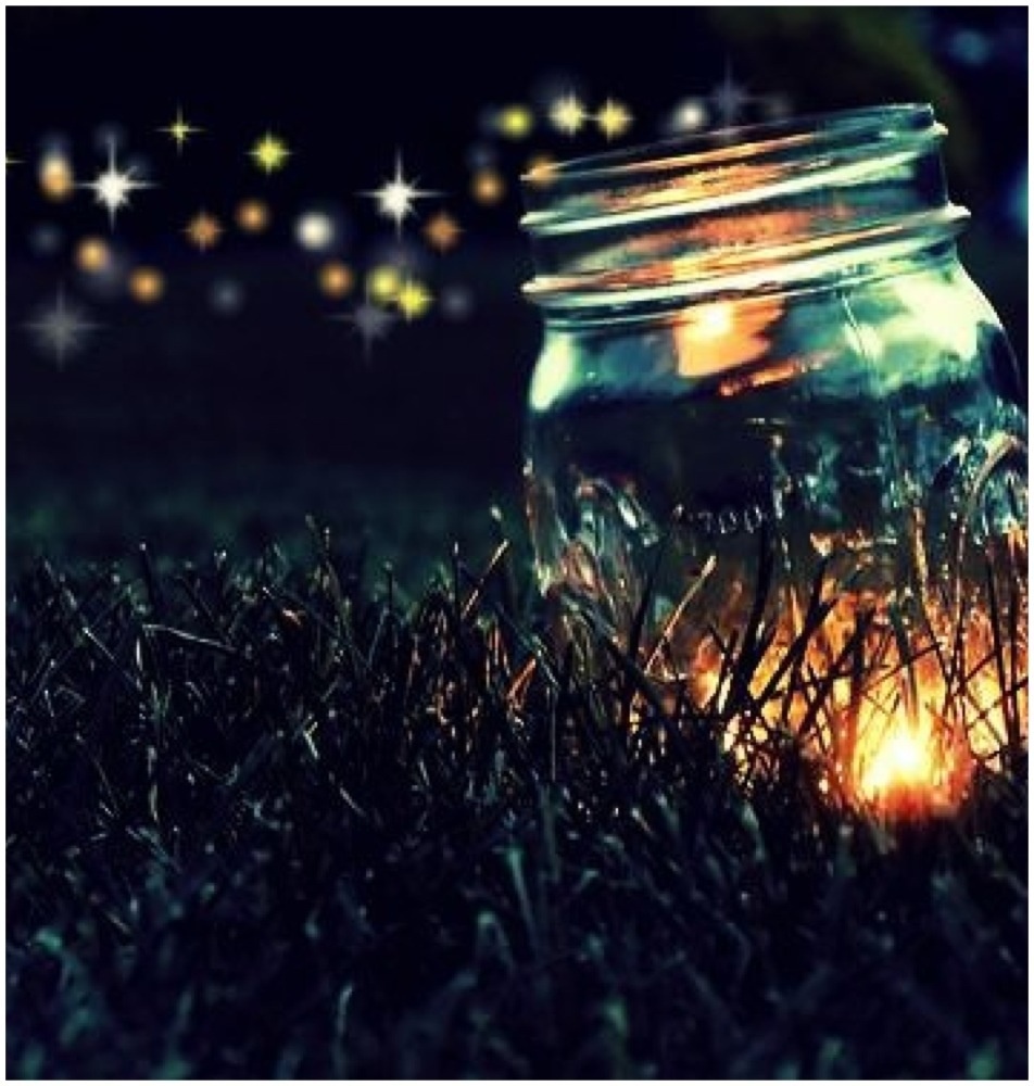 35   Great Firefly Jar for Firefly Jar Tumblr  569ane