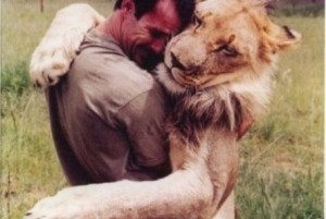 funny-man-hugging-lion-445x299
