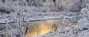 Winter-Sun-s